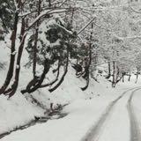 snowfaall