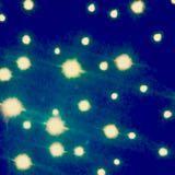 trini_03
