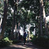 angie_duero