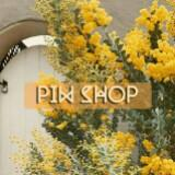 piw.shop