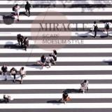 miraclescarf.bdg