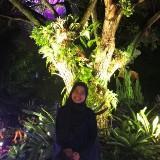 nurcahaya_