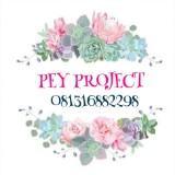 peyproject