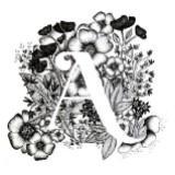 acatherine