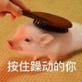 ching_g