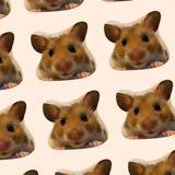 hamsterlovely