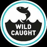 wildcaughtaquarium