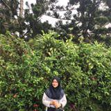 calvionita_azhari