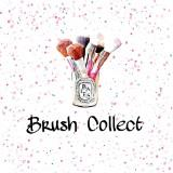 brushcollect.cpt