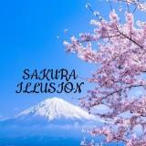 sakura.illusion