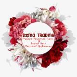 dzma_trading