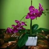 aisya_florist