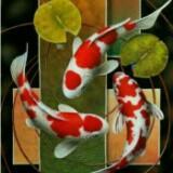 taniatama