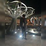 cheng_0618