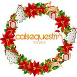 calsequestrin