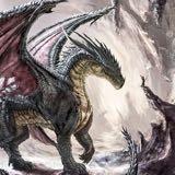 dragon7611