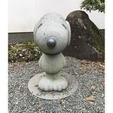 koala73