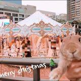 rabbit_0507