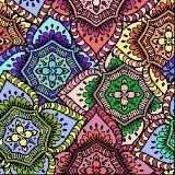 stargazerlillies
