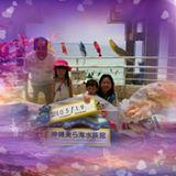 vincentwong719