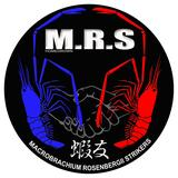 homegrown.mr-s