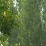regnstorm