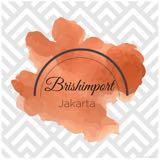 brishimport_
