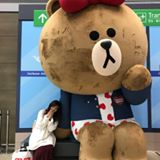 midori_takara