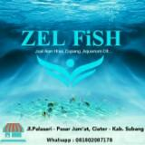 zel_fish
