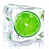 frozenlime