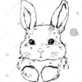snowy_bunny