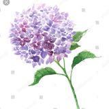 flower_de_shop