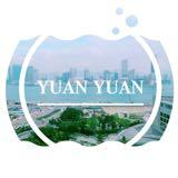 yuanyuan_buying