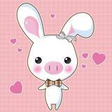 pigrabbit18
