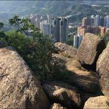 carney_hk