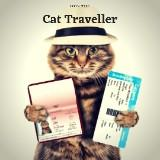 cattravellers