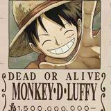 strawhat.luffy
