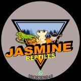 jasmine638