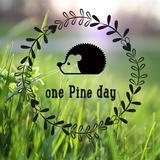 onepineday