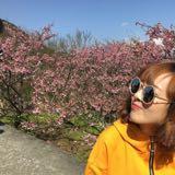 hui__hui