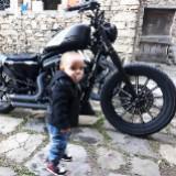 lelong_broque
