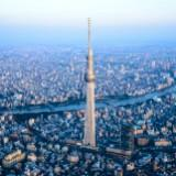 skytrees