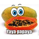 yayapapaya90