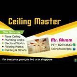 ceilingmster