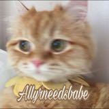 allyrneedsbabe