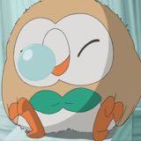 dodobird_hk