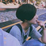 ls_lai