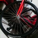 bikelifesg