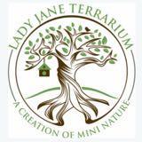 ladyjaneterrarium