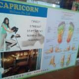 capricorn.wellness